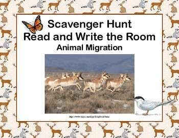 Scavenger Hunt-Animal Migration- Read and Write The Room