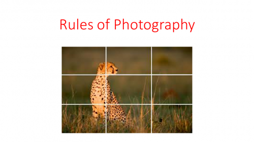 Rules of Photography